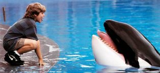 free willy the movie